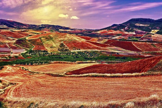 stubble fields on the hills of sicily at sunset